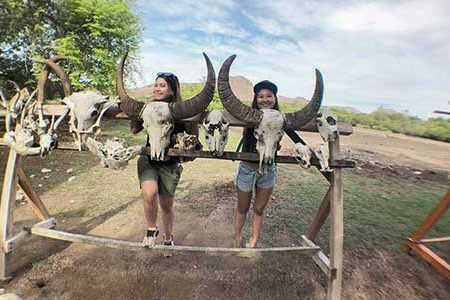 6 Best Tours to Komodo National Park